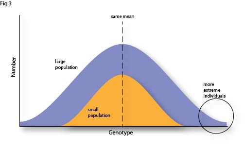 Fig 3 Increased population and extreme individuals